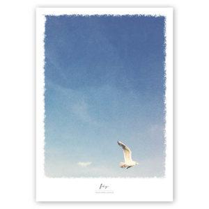 Möwen-Druck Fly maritimes Poster mit Möwe hellblau Hamburger Hafen A4 Titel